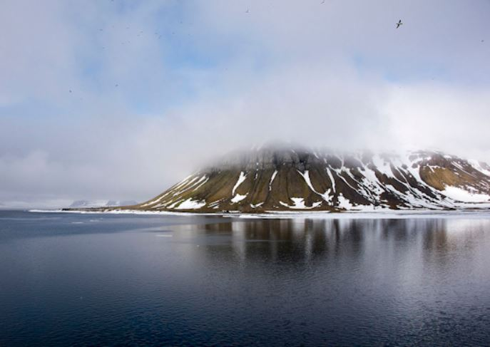 Researchers have found five new islands in the frosty waters off the north coast of Russia, five new islands russian arctic, five new islands russian arctic video, five new islands russian arctic picture
