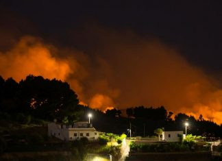 gran canaria wildfire evacuations, gran canaria wildfire evacuations august 2019, gran canaria wildfire evacuations august 18 2019