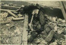 japan soldiers cannibalism, ww2 japan soldiers cannibalism
