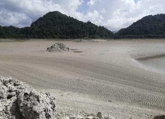 mexico jungle lakes disappear, mexico jungle lakes dry up, mexico jungle lakes evaporate, mexico jungle lakes disappear picture, mexico jungle lakes disappear august 2019