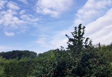 Strange sounds from the Sky! Germany near Heidelberg. Doomsday trumpets phenomenon