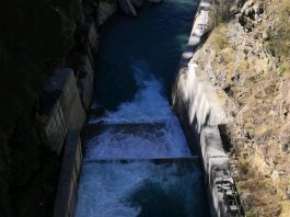 This was a small check dam on the foothills of Himalaya, the water was just mesmerising