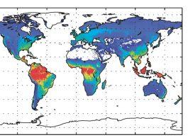 amazon does not produce 20 percents oxygen world