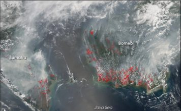 Fires in Indonesia disrupt air traffic