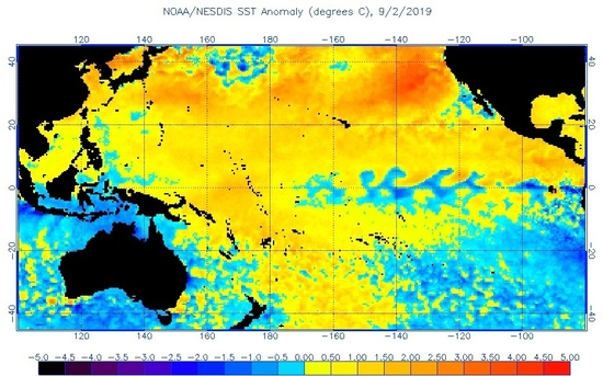 new blob hot water west coast usa, new blob hot water west coast usa map, new blob hot water west coast usa video, new blob hot water west coast usa september 2019