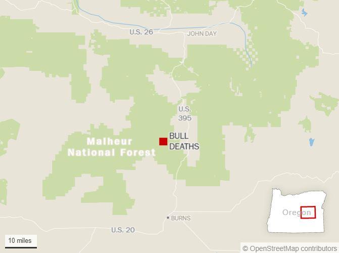 oregon bull mutilations and killings 1 Misteriosas matanzas y mutilaciones de ganado alarman a los ganaderos en Oregon. No hubo sangre ni señales de lucha  No hay explicación