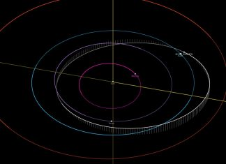 giant asteroid november 21, giant asteroid november 21 video, giant asteroid november 21 orbit, giant asteroid november 21 november 21 2019