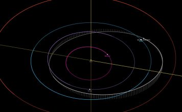 giant asteroid november 21, giant asteroid november 21 video, giant asteroid november 21 orbit, giant asteroid november 21 november 21 2019