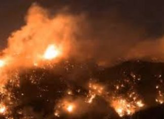 lebanon fires, lebanon fires video, lebanon fires pictures, lebanon fires october 2019