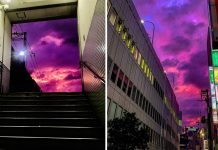 purple sky japan, purple sky japan video, purple sky japan pictures, purple sky japan typhoon hagibis