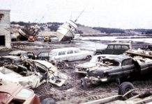 Tsunamis are responsible for the spread of deadly fungal diseases