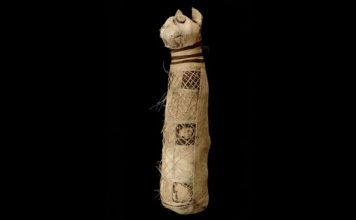 ancient cat mummy 3 tails and 5 hing legs