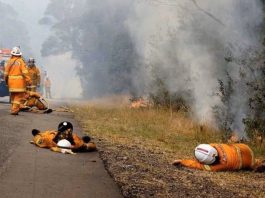 australia fires, australia fires pictures, australia fires videos, more than 1 mio hectares burnt in australia fires