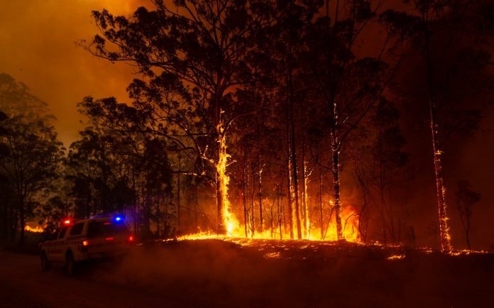 NSW and Queensland bushfires: Sydney to face catastrophic fire danger for first time, NSW and Queensland bushfires: Sydney to face catastrophic fire danger for first time video, NSW and Queensland bushfires: Sydney to face catastrophic fire danger for first time news, NSW and Queensland bushfires: Sydney to face catastrophic fire danger for first time update