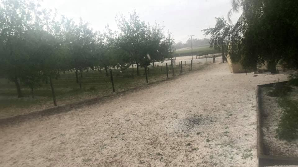 riverland hailstorm australia, riverland hailstorm australia video, riverland hailstorm australia pictures, riverland hailstorm australia november 2019