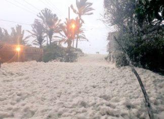 sea foam apocalypse mexico, sea foam apocalypse mexico video, sea foam apocalypse mexico pictures, sea foam apocalypse mexico november 2019