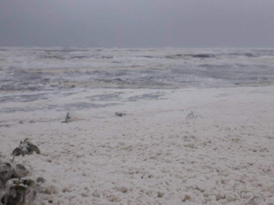 sea foam apocalypse mexico, sea foam apocalypse mexico video, sea foam apocalypse mexico pictures, sea foam apocalypse mexico november 2019