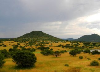 south africa hotspot mystery, why is Southern Africa is characterised by unusually elevated topography and abnormal heat flow?, Southern Africa is characterised by unusually elevated topography and abnormal heat flow