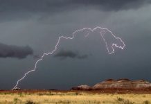 Dinosaur lightning, lightning kills 5 football players zambia