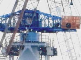 fukushima radiation workers