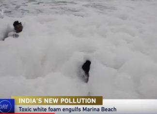 toxic foam chennai beach, toxic foam chennai beach video, toxic foam chennai beach image, toxic foam chennai beach pictures