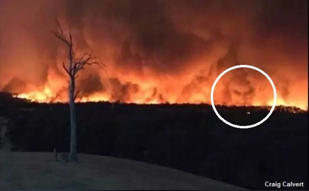 demonic face nsw fires, Spooky 'Demon Face' Spotted in Smoke From Australian Wildfires, Spooky 'Demon Face' Spotted in Smoke From Australian Wildfires pictures, Spooky 'Demon Face' Spotted in Smoke From Australian Wildfires video, Spooky 'Demon Face' Spotted in Smoke From Australian Wildfires twitter