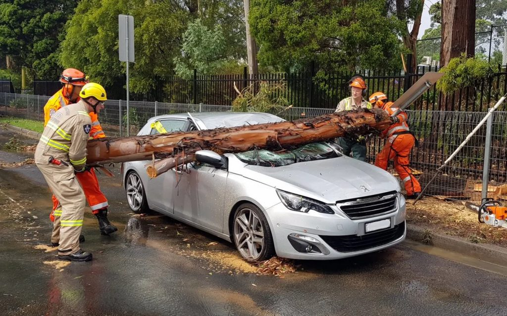 A severe thunderstorm has struck Melbourne's suburbs, bringing golf ball-sized hailstones that damaged cars and houses,  damaged ceilings in one supermarket and brought freeway traffic to a standstill