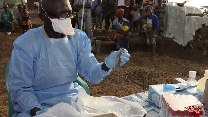 nigeria lassa fever outbreak, nigeria lassa fever outbreak video