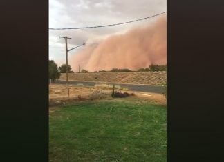 parkes dust storm, Parkes NSW dust storm, Parkes NSW dust storm video, Parkes NSW dust storm pictures, Parkes NSW biblical sand storm january 19 2020, day changes into night as giant dust storm sweeps across parkes nsw