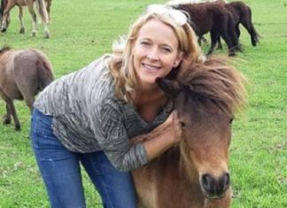 horse raped, horse raped in Australia, horse raped in Shoalhaven Australia