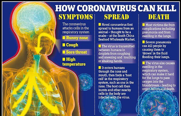 how coronavirus can kill, Chinese cities try to flush out coronavirus patients by stopping cough medicine sales