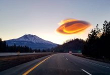 lenticular cloud mont Shasta, lenticular cloud mont Shasta pictures, lenticular cloud mont Shasta video, lenticular cloud mont Shasta weed california, Alien Sunrise mount shasta february 2020