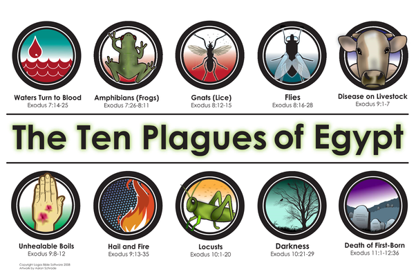Locusts, pestilence of livestock, disease. The 10 plagues of Egypt seem to be playing out in today's world, as locusts invade Africa, pigs die in China and the pandemic stalks the Earth
