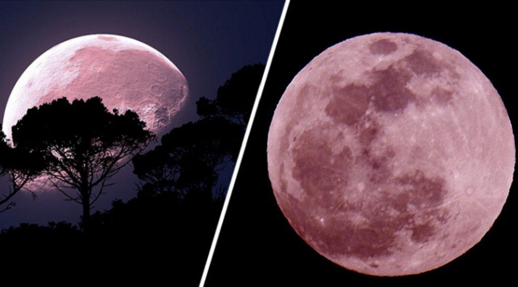 pink full moon, pink supermoon, pink supermoon april 2020, brightest supermoon april 2020, largest supermoon april 2020, meteor shower april 2020, lyrid meteor shower april 2020