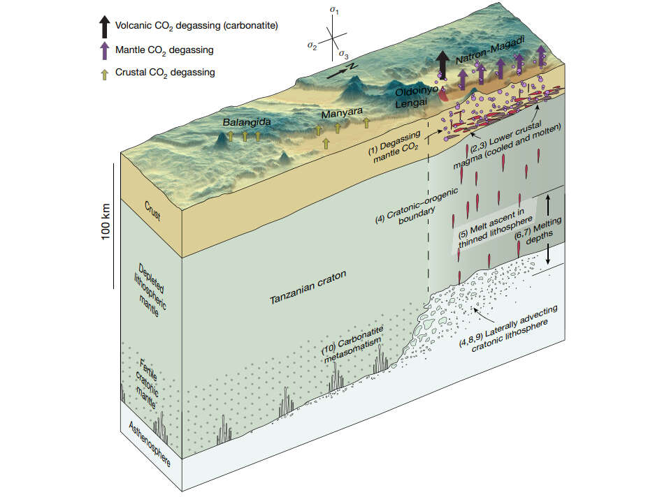 Carbon causes continents to crack up, especially along the East African Rift, carbon dioxide and rift formation, rift formation