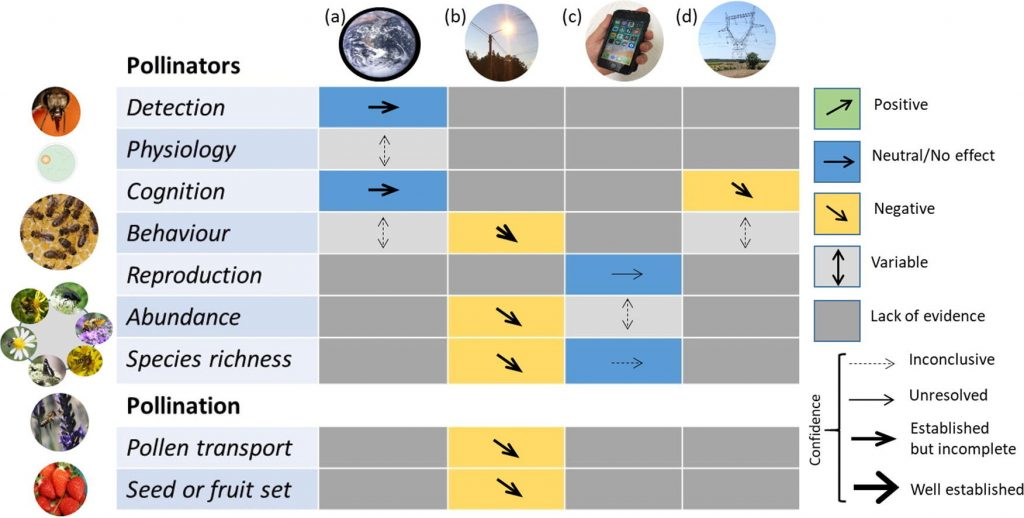Risk to pollinators from anthropogenic electro-magnetic radiation (EMR)