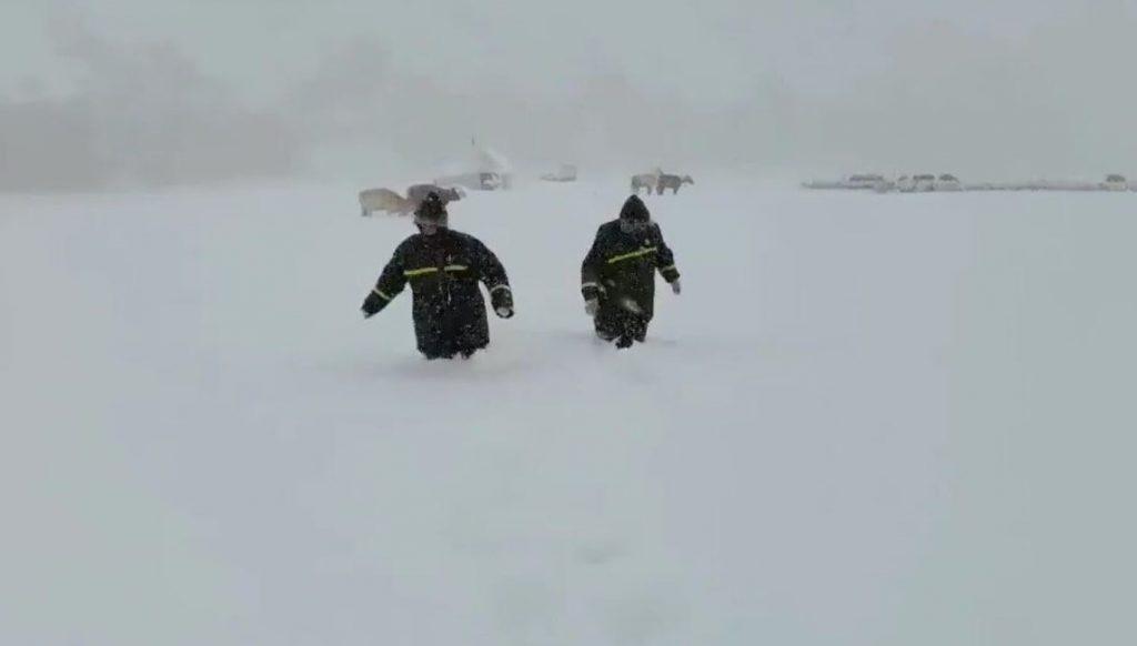 china summer blizzard kills hundreds of livestock, chinese blizzard july 2020, summer blizzard china
