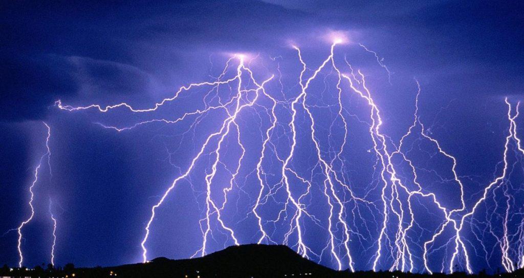 lightning kills hundreds of animals in India