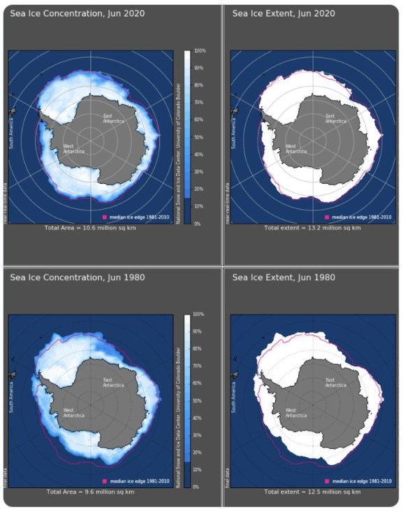 Sea ice extent in Antarctica greater now than in 1980