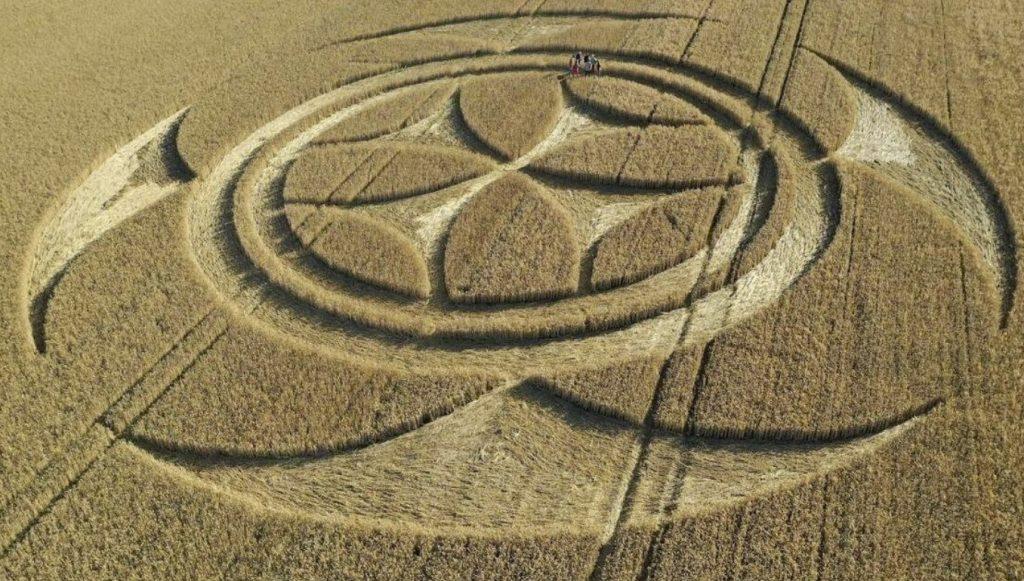 templar crop circle France, templar crop circle France video, templar crop circle France picture, templar crop circle France july 2020