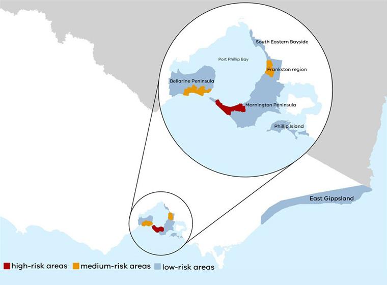 buruli ulcer outbreak australia, buruli ulcer outbreak australia map, flesh-eating bacteria outbreak australia