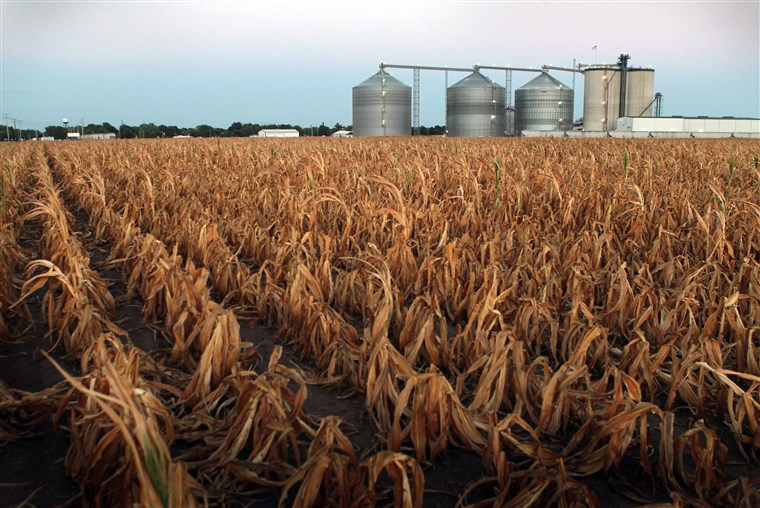 drought iowa august 2020, drought iowa august 2020 largest in decades