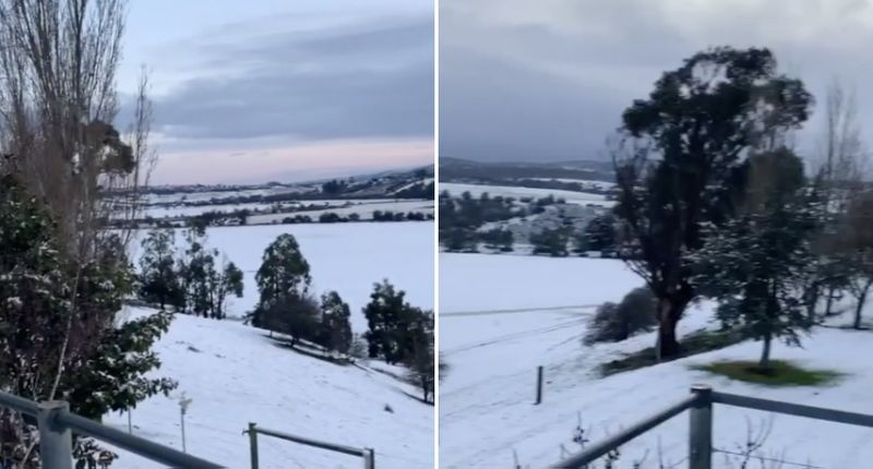 launceston, launceston Tasmania covered in snow for first time in 40 years, extremely rare snow in Tasmania and victoria, rare snow australian city august 5 2020