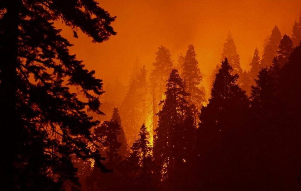 US West Coast wildfires continue to rage: At least 36 people dead, nearly 5 million acres torched - smoke cloud reaches East Coast
