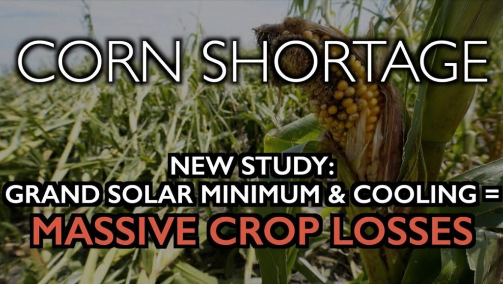 Corn shortage, Corn shortage: New research shows that solar minimum kills crops, New research shows that solar minimum kills crops