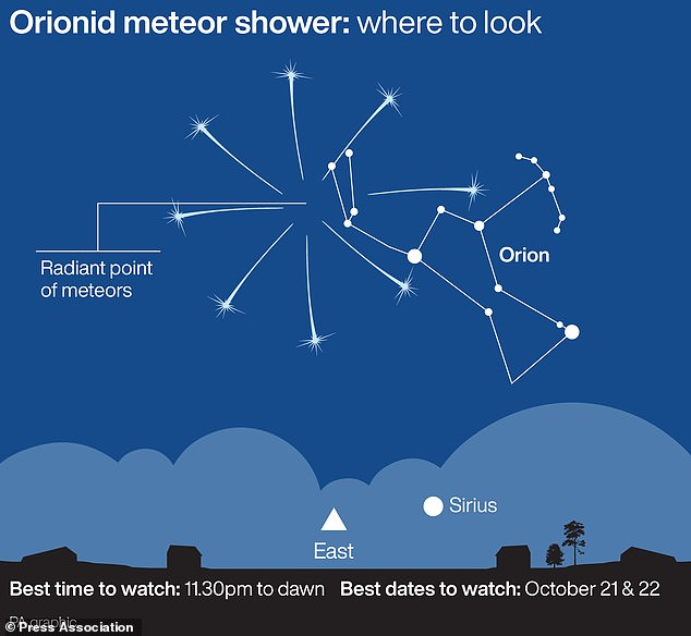The Orionid meteor shower will peak on October 21, The Orionid meteor shower will peak on October 21 peak, The Orionid meteor shower will peak on October 21 2020