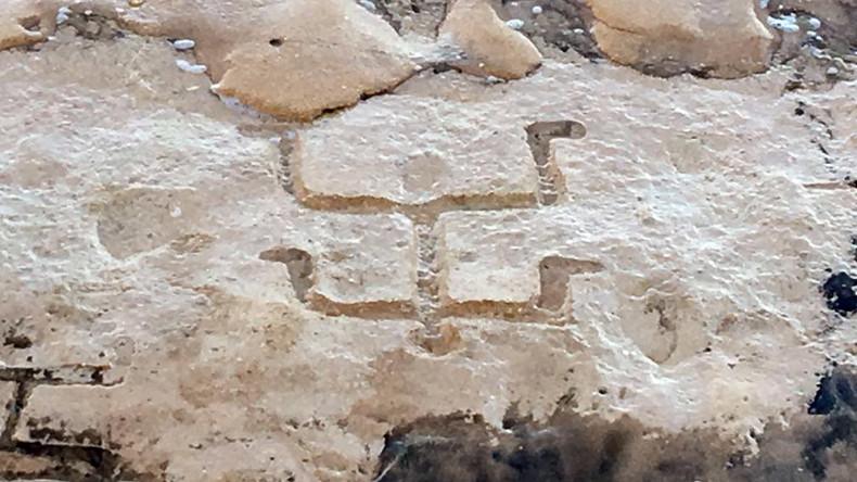 pteroglyphs hawaii