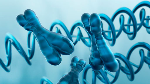 The VEXAS syndrome, 'The VEXAS syndrome': Scientists discover a rare and deadly inflammatory disorder in men, Scientists discover a rare and deadly inflammatory disorder in men