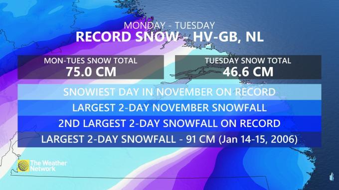 blizzard labrador, Labrador blizzard, Labrador blizzard video, Labrador blizzard pictures, Labrador blizzard canada, Labrador blizzard november 2020