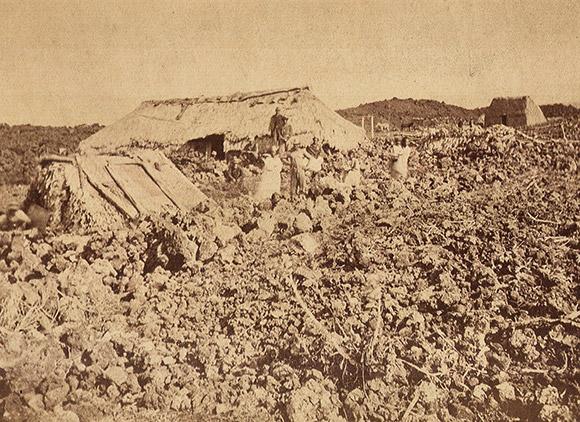 deadliest earthquake usa M7.9 1868 Hawaii earthquake